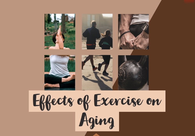 Effects of Exercise On Aging